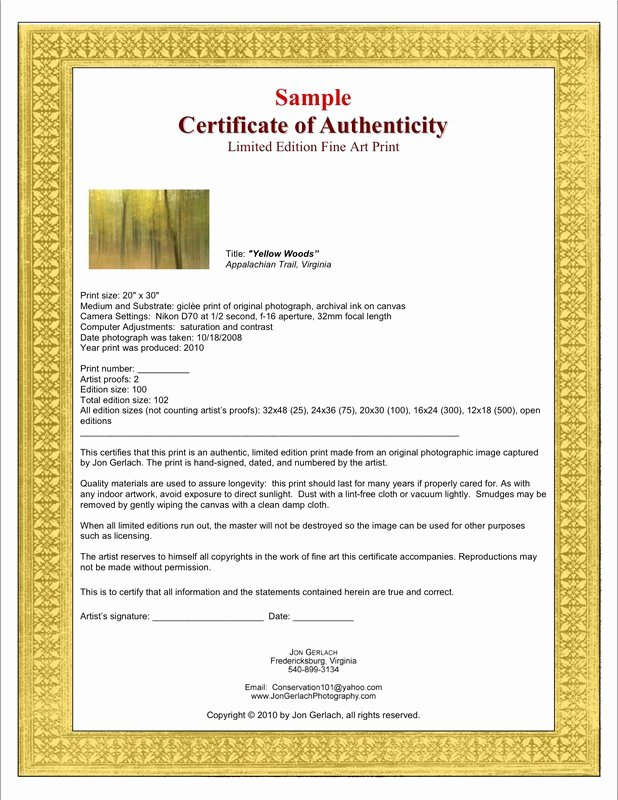 Certificate Of Authenticity Art Template Lovely Certificates Of Authenticity for Artists