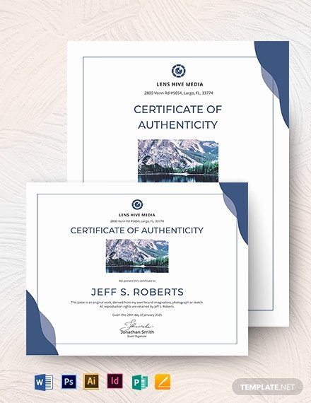 Certificate Of Authenticity Art Template Luxury Certificate Of Authenticity Template 19 Free Word Pdf