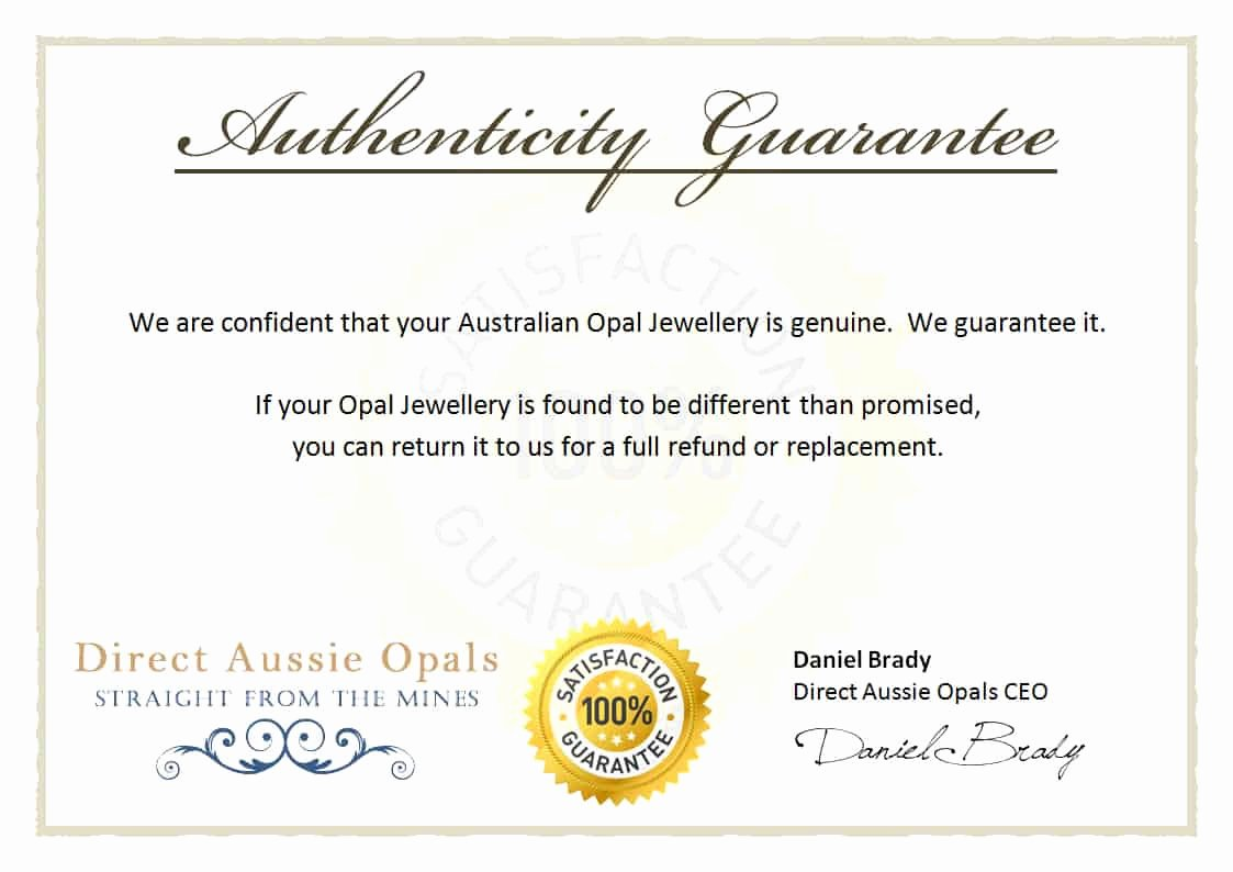 Certificate Of Authenticity Autograph Template Elegant Certificate Authenticity Templates Word Excel Samples