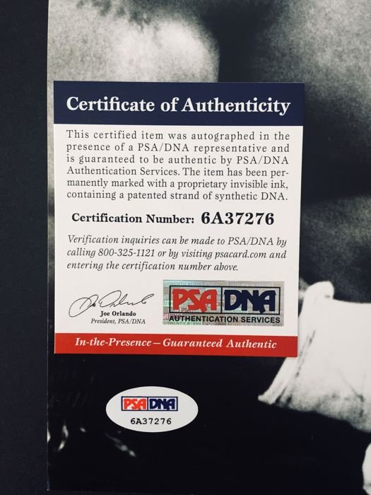 Certificate Of Authenticity for Photography Elegant Mike Tyson original Signed 28x35cm with