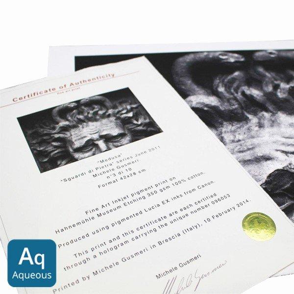 Certificate Of Authenticity Paper Unique Hahnemühle Certificates Of Authenticity On Inkjet Paper