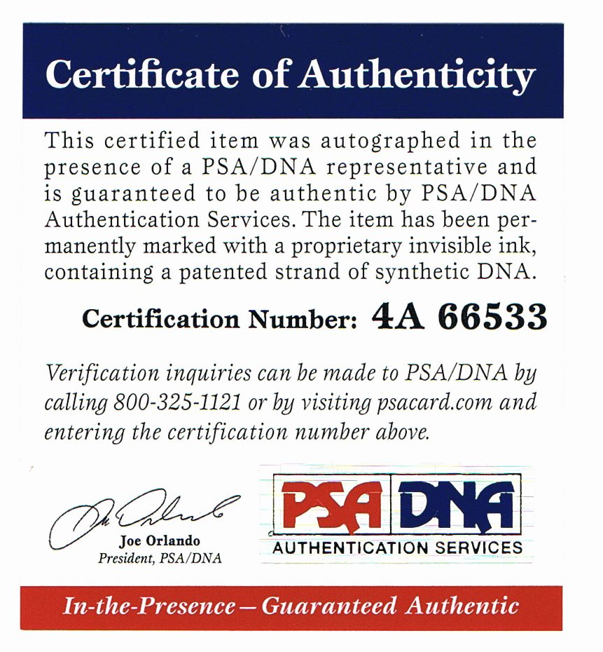 Certificate Of Authenticity Sports Memorabilia Template Unique Spiritual Awakening are You Certified Authentic
