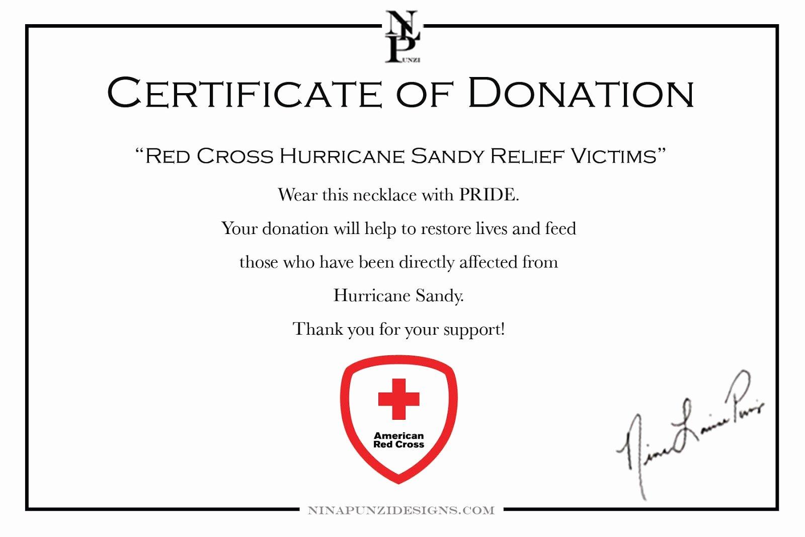Certificate Of Donation Template Beautiful Ninapunzidesigns