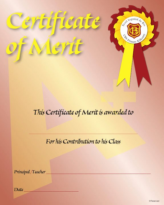 Certificate Of Merit Sample Fresh Merit Award
