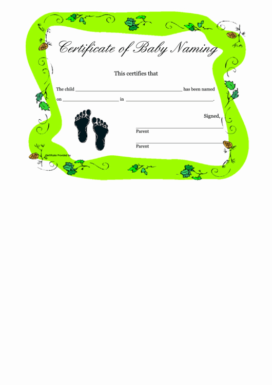 Certificate Of Occupancy Template Unique Certificate Baby Naming Template Printable Pdf