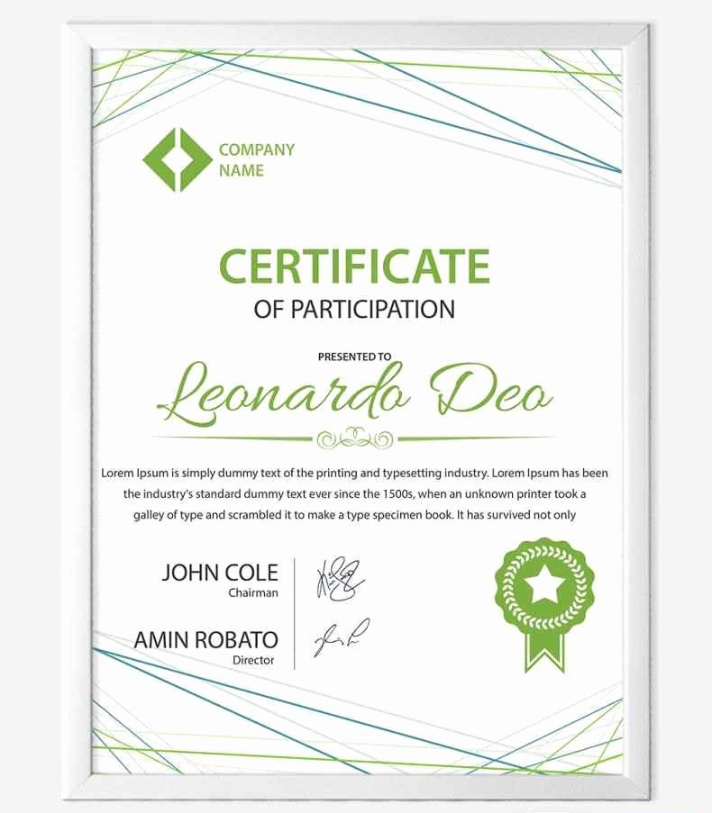 Certificate Of Participation Design Beautiful Design Certificate Participation Template