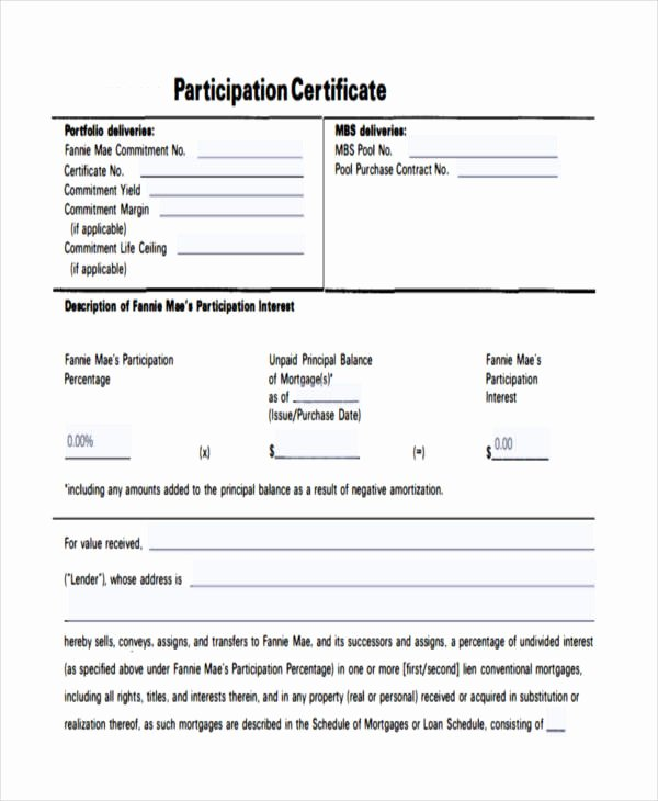 Certificate Of Participation Pdf Awesome 32 Certificate Templates In Pdf
