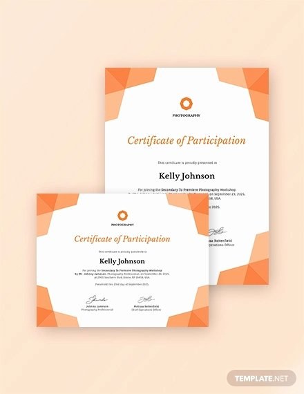 Certificate Of Participation Pdf Unique 31 Participation Certificate Templates Pdf Word Psd