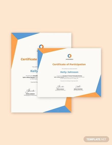 Certificate Of Participation Sample Lovely Sample Certificate 47 Examples In Pdf Word Ai