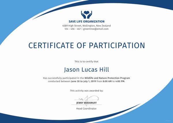 Certificate Of Participation Template Doc Beautiful 38 Sample Certificate Templates Pdf Doc