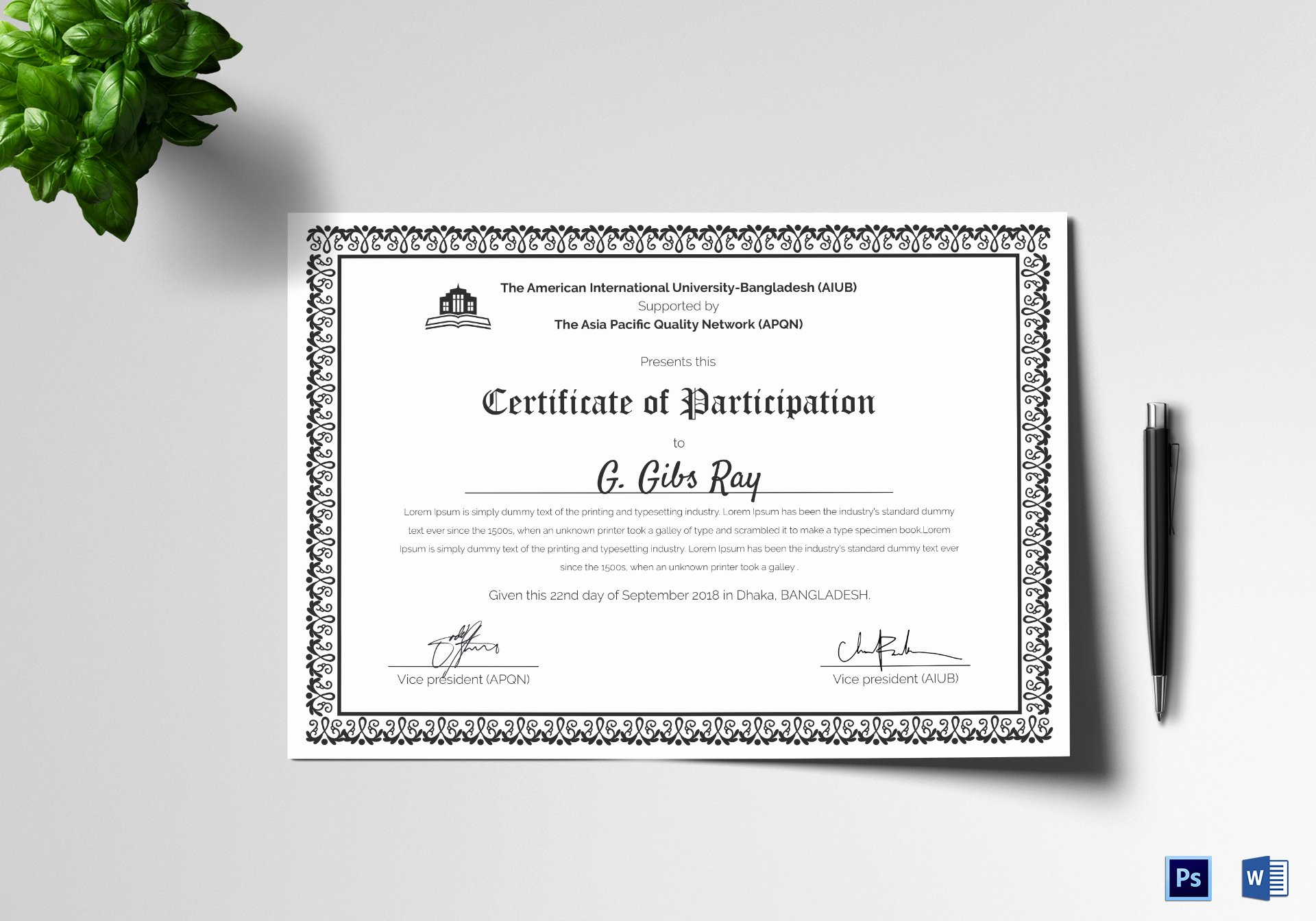 Certificate Of Participation Template Doc Elegant Printable Participation Certificate Design Template In Psd