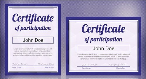 Certificate Of Participation Template Word Unique Free 13 Sample Certificates In Pdf Word