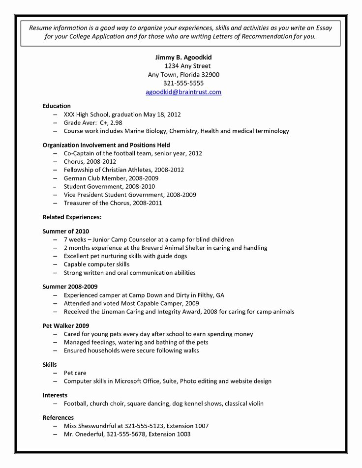 College Application Sample Beautiful College Admission Resume Template