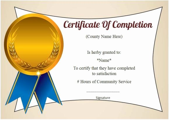 Community Service Hours Certificate Template Best Of 12 Best Munity Service Certificate Of Pletion Images