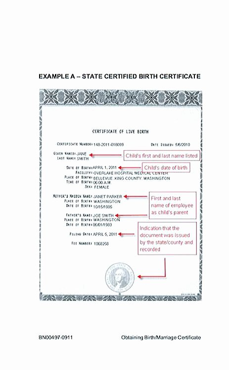 Create A Birth Certificate for School Project New Cute Looking Birth Certificate Template Birth