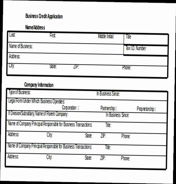 Credit Application form Inspirational Business Credit Application form Pdf