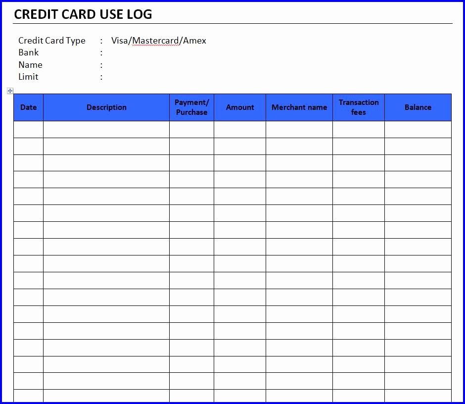 Credit Card Ledger Template Luxury Credit Card Use Log Template Ms Word Templates