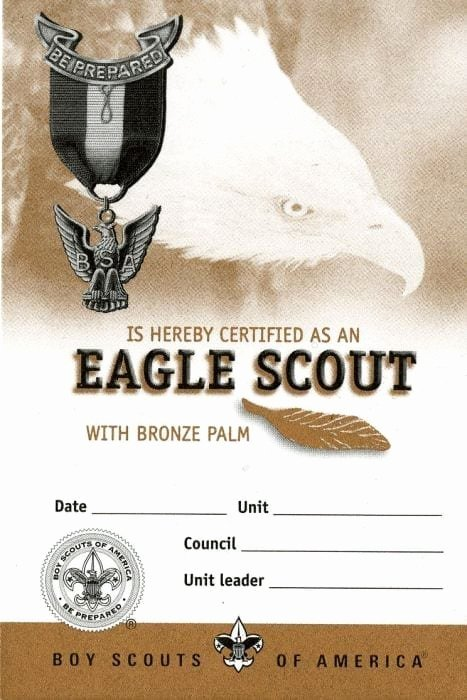 Cub Scout Pocket Certificate Template Awesome Eagle Scout Bronze Palm Pocket Certificate Single Boy
