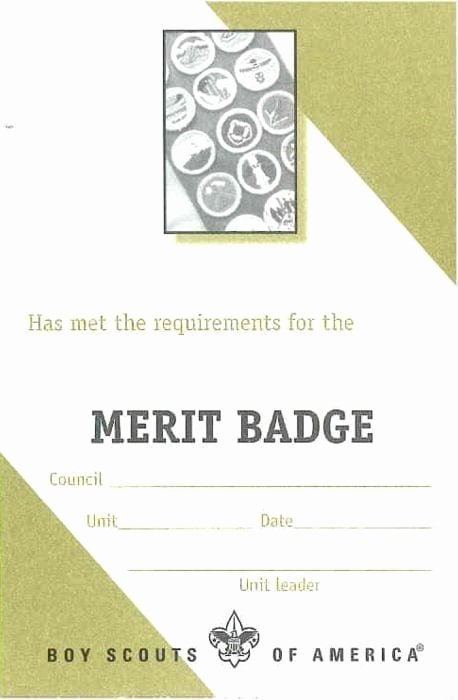 Cub Scout Pocket Certificate Template Best Of Merit Badge Pocket Certificate Single Boy Scouts Of
