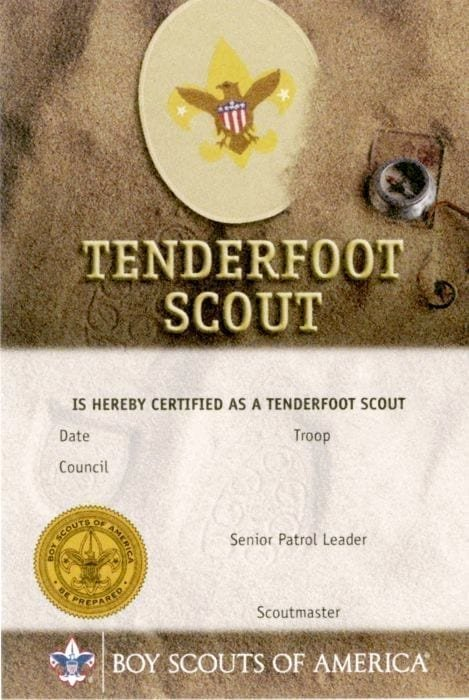Cub Scout Pocket Certificate Template Lovely Tenderfoot Rank Pocket Certificate Single Boy Scouts