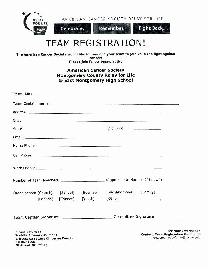 Day Camp Registration form Template Luxury after School Program Application Template