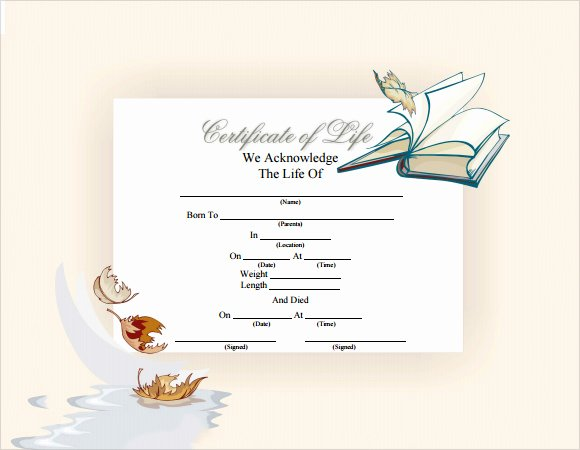 Death Certificate Template Microsoft Word Awesome Sample Death Certificate Template 7 Download Documents