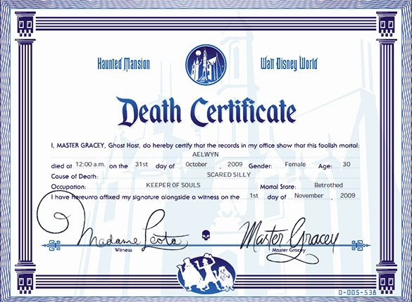 Death Certificate Template Microsoft Word Unique Death Certificate Template Microsoft Word