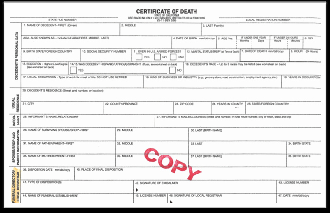 Death Certificate Template Word Lovely Blank Certificate Google Search