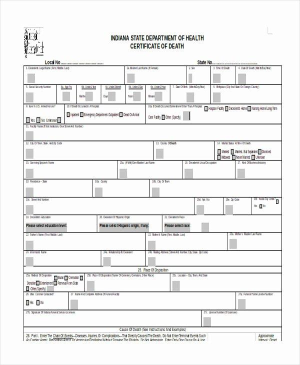 Death Certificate Template Word Luxury 17 Certificate Templates In Word