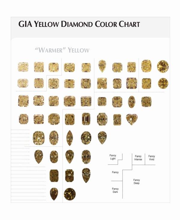 Diamond Carat Size Chart Pdf Awesome 7 Diamond Clarity Chart Templates Free Sample Example