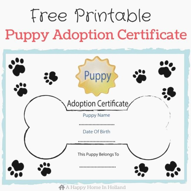 Dog Adoption Certificate Template Free Awesome Mesmerizing Free Printable Adoption Certificate
