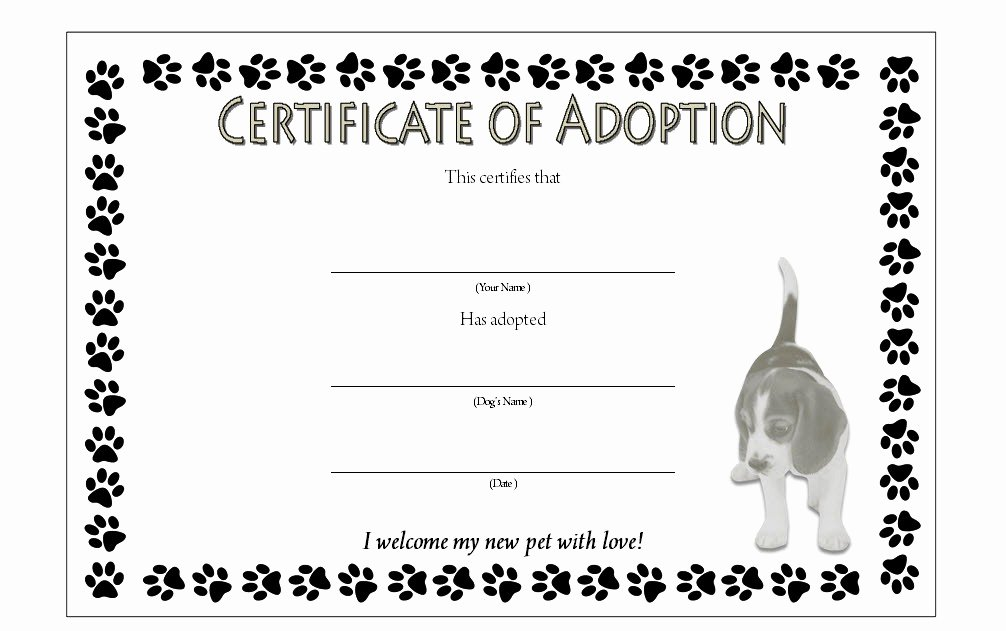 Dog Adoption Certificate Template Free Luxury Puppy Adoption Certificate Templates