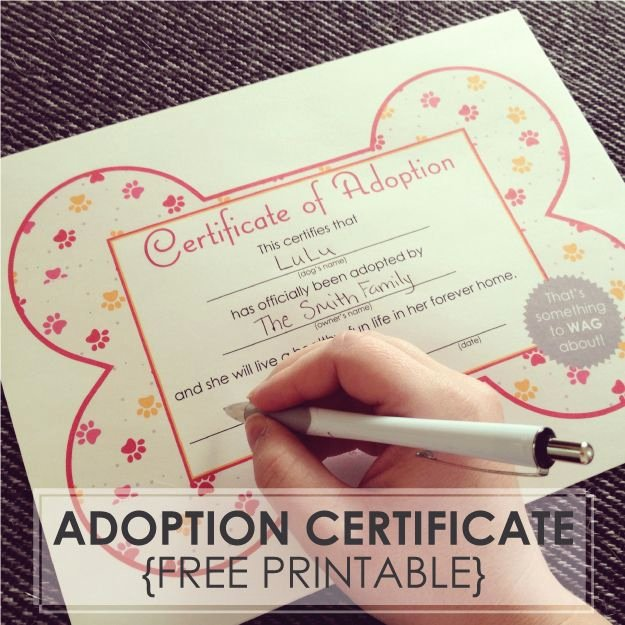 Dog Adoption Certificate Template Free New Free Printables Dog Adoption Certificates