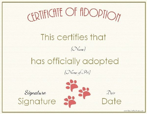 Dog Adoption Certificate Template Free Unique 27 Of Animal Certificate Template