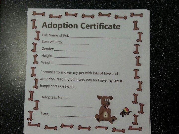 Dog Adoption Certificate Template New 77 Best Images About Teddy Bears On Pinterest