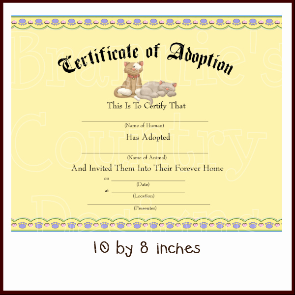 Dog Adoption Certificate Template Unique Cat Adoption Certificate Dis 600×600 Pixels