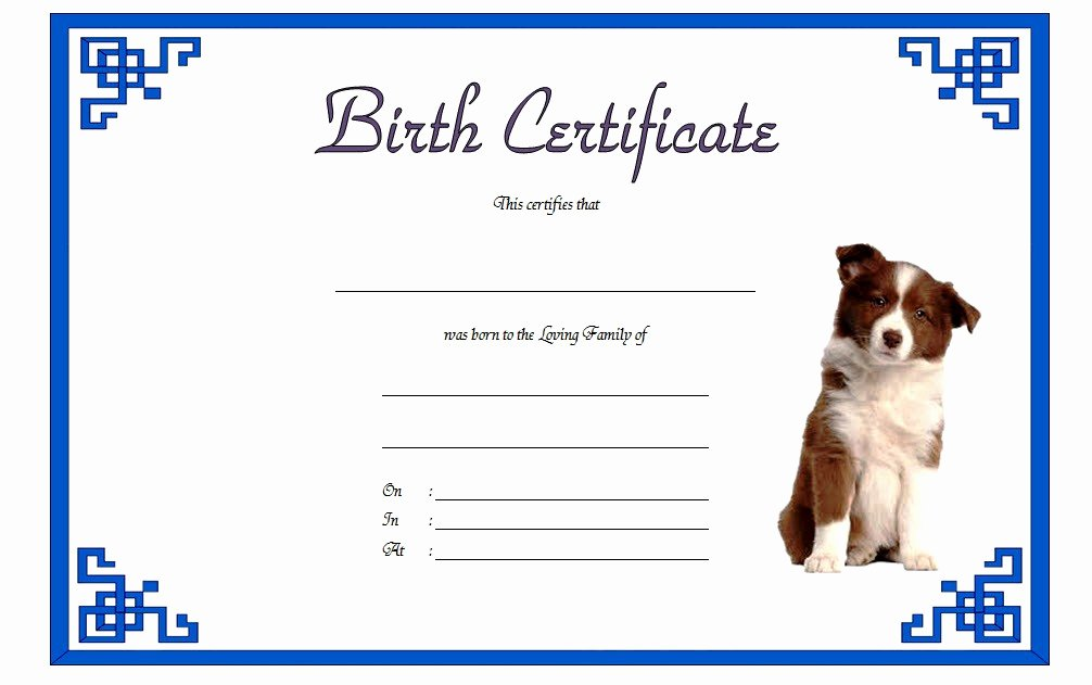Dog Birth Certificate Templates Awesome Dog Birth Certificate Template Editable [9 Designs Free]
