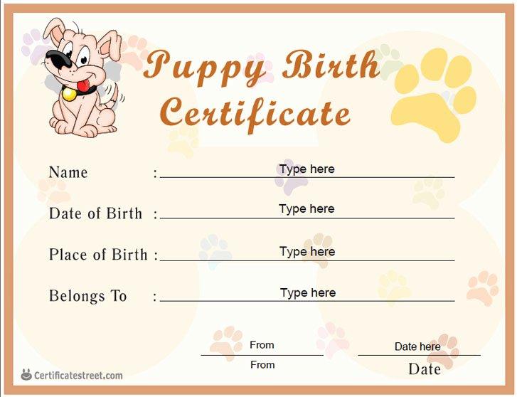Dog Birth Certificates Printable Unique Special Certificates Puppy Birth Certificate
