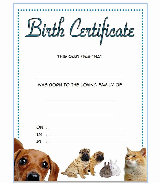 Dog Birth Certificates Templates Awesome Pet Birth Certificate Templates Fillable [7 Best Designs