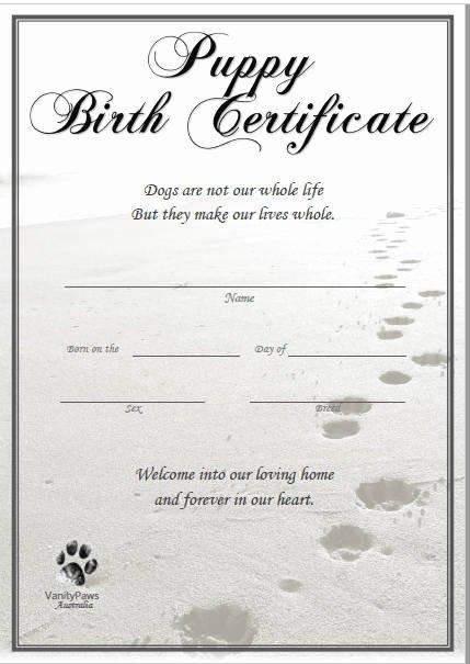 Dog Birth Certificates Templates Beautiful Puppy Birth Certificate