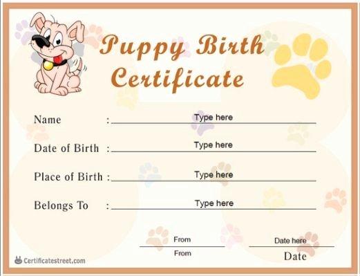 Dog Birth Certificates Templates Best Of Puppies Vet Visit 06 21 2013 Puppy