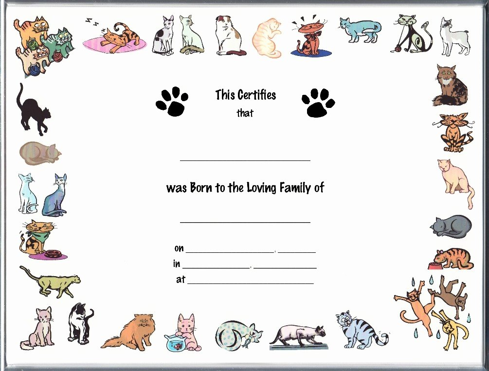 Dog Birth Certificates Templates Fresh 2 Full Scale Image Shown Of Certificate Of Newborn Cat