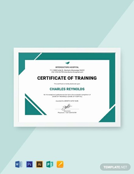 Dog Training Certificate Template Best Of 12 Free Training Certificate Templates Word