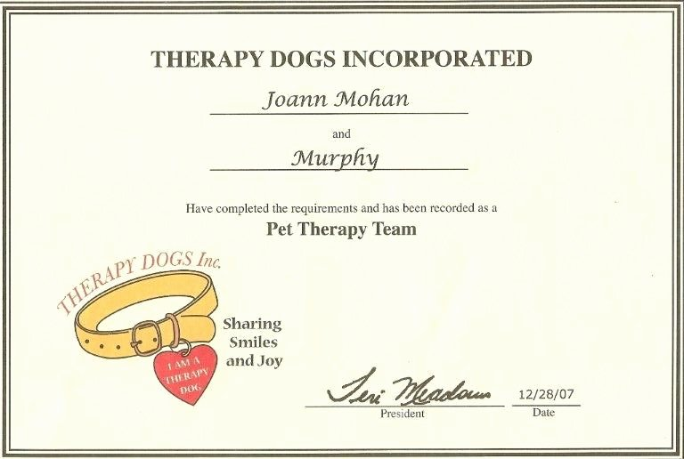 Dog Training Certificate Template Best Of 24 Of Service Animal Certificate Template