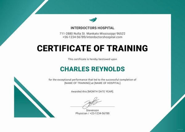 Dog Training Certificate Template Best Of 27 Training Certificate Templates Doc Psd Ai