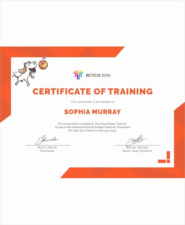 Dog Training Certificate Template Elegant Certificate Template 45 Free Printable Word Excel Pdf