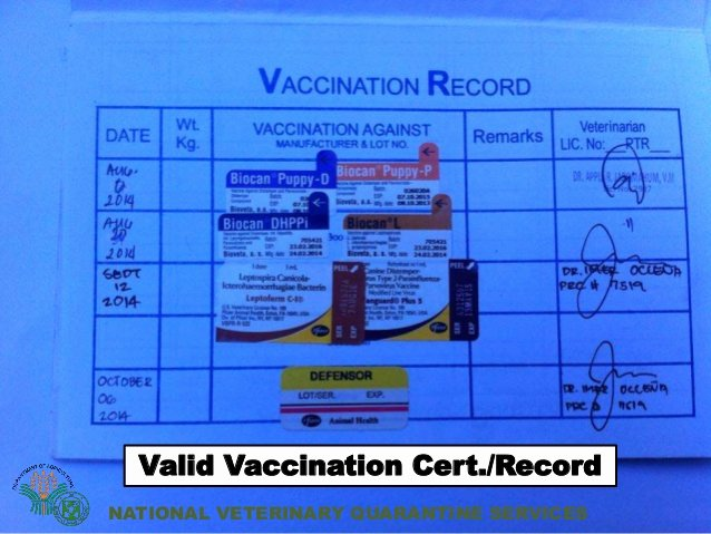 Dog Vaccination Certificate Template Fresh Veterinary Quarantine Services In the Philippines
