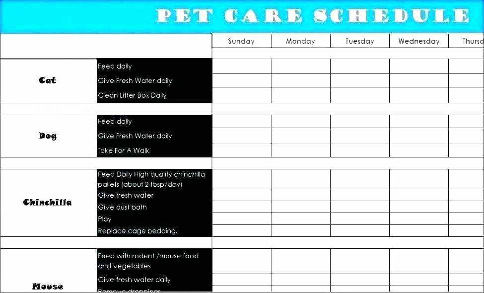 Dog Vaccination Certificate Template Unique Pet Health Record Template Excel