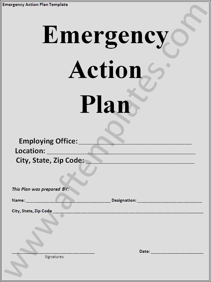 Emergency Action Plan Template Best Of Action Plan Template