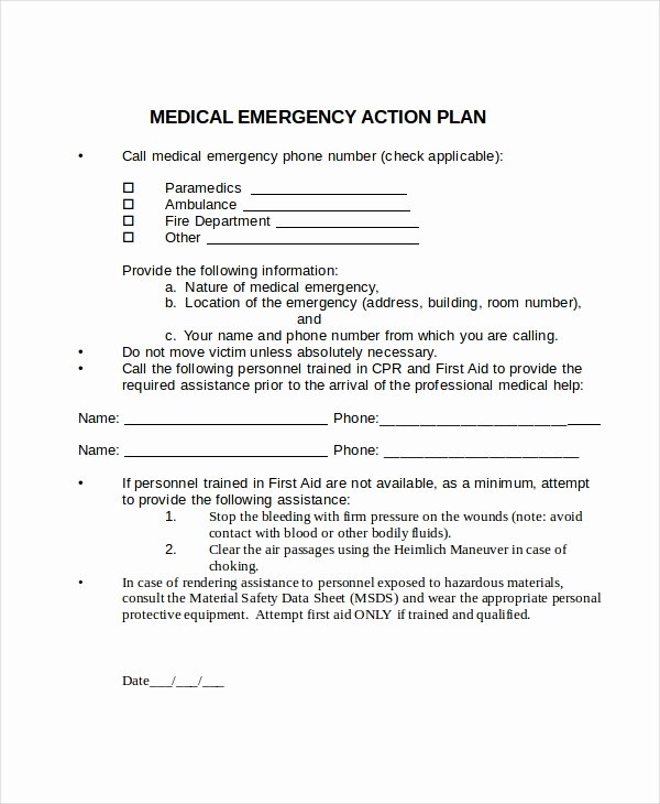 Emergency Action Plan Template Unique Action Plan Template 24 Free Word Pdf Document